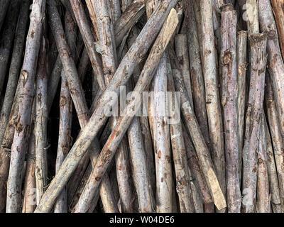 Holz- Haufen Textur in Baustelle Stockfoto
