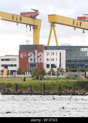Belfast, Nordirland, Großbritannien. 30. Juni 2019. Die Titanic Triathlon wurde in Belfast heute Morgen in der Runde der Titanic Quarter bei Belfast Hafen und gehalten. Kredit. David Hunter/Alamy Leben Nachrichten. - Stockfoto