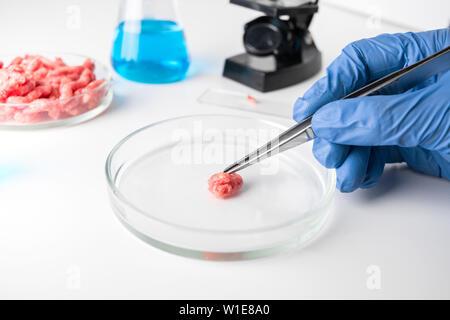 Hackfleisch in Petrischale in Händen Wissenschaftler. Close Up. Chemischen Experiment. Labor Wissenschaft Studien. - Stockfoto