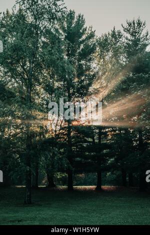 Bersten Lichtstrahlen, Lichtstrahlen durch die Bäume in den Wald oder Park bei Sonnenaufgang in der Nähe von Saylorville Lake, Polk City, Iowa. - Stockfoto