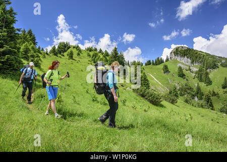 Drei Personen wandern durch Wiese, Hennenkopf, Ammergauer Alpen, Oberbayern, Bayern, Deutschland - Stockfoto