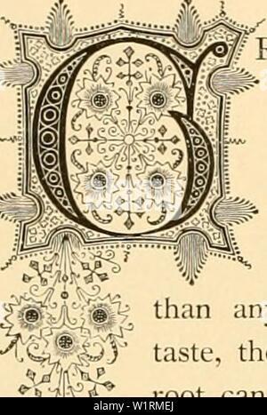 Archiv Bild von Seite 71 der Cyclopedia von praktische Blumenzucht (1884) - Stockfoto