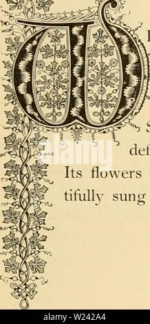 Archiv Bild ab Seite 198 von Cyclopedia von praktische Blumenzucht (1884) - Stockfoto