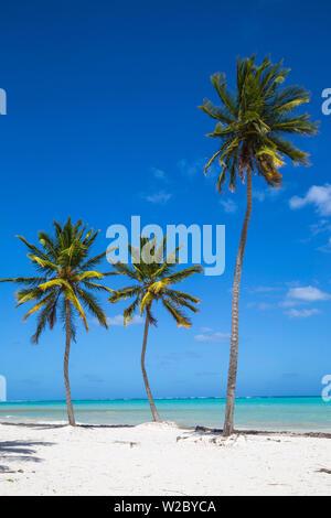 Dominikanische Republik, Punta Cana, Punta Cana Strand