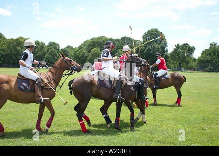 Bezirk Cup Polo Match in Washington DC im Juni 2019 - Stockfoto