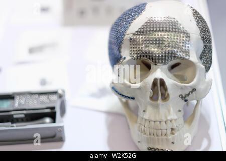 Der menschliche Schädel Modell als Lehrmittel für Anatomie an der Ausstellung von medizinischen Geräten - Stockfoto
