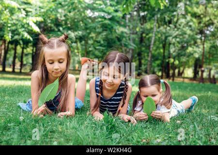 Kinder spielen im Sommer Park. Drei kleine Mädchen Festlegung auf Grün frisches Gras - Stockfoto