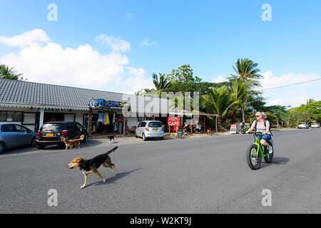 Touristische Radfahren mit streunenden Hunden, die auf der Straße. Sie sind ein Problem in Rarotonga, Cook Inseln, Polynesien - Stockfoto