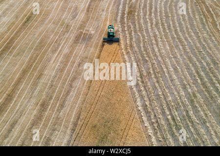Luftaufnahme eines Mähdreschers mit Dreieck peice von Ernte Feld auf einem falmland. Landwirtschaft Industrie Konzept - Stockfoto