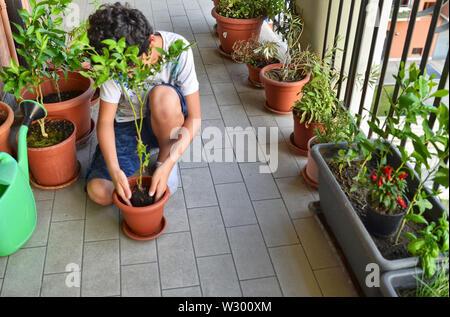 Eine junge Kaukasier junge bereitet eine blaubeere Anlage zu Pot. Er hält es in der Mitte der Vase, die bereits teilweise mit Erde gefüllt, waiti - Stockfoto