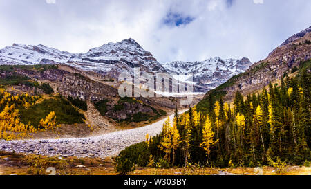 Gipfel in den Rocky Mountains auf der Ebene von sechs Gletscher in der Nähe des Victoria Glacier. Auf dem Wanderweg von der Tea House zu den sechs Gletscher gesehen - Stockfoto