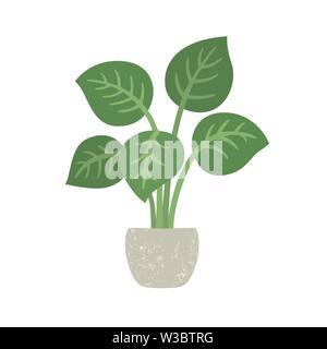 Zimmerpflanze mit Topfpflanzen. Vector Illustration isoliert. EPS 10. - Stockfoto