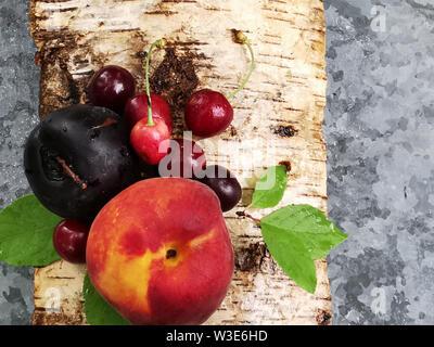 Saftige Früchte: Pfirsich, Kirsche und Pflaume auf der Rinde von Birken in einem Sommertag. Sommerfrische - Stockfoto