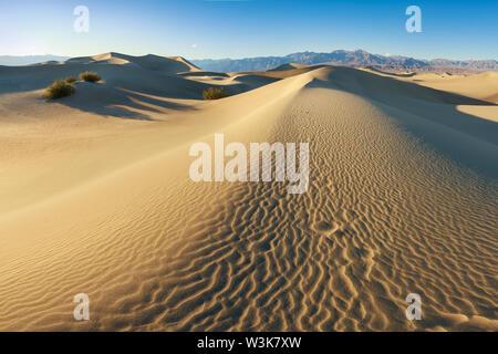 Am frühen Morgen Sonnenlicht über Sanddünen und Berge bei Mesquite flache Dünen, Death Valley National Park, Kalifornien USA Stovepipe Wells Sanddünen - Stockfoto