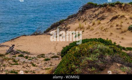 Cape Naturaliste Trail in der Nähe von Dunsborough, Western Australia - Stockfoto