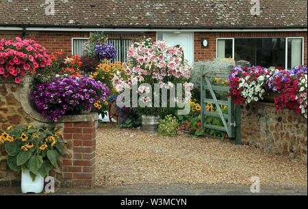 Vorgarten, Antrieb, Containerpflanzen, Engelstrompeten, Geranium, farbenfrohen Pflanzen, kleinen Haus, Bungalow - Stockfoto