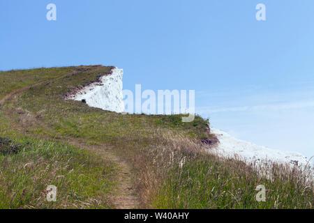 Wanderweg zu White Cliff Edge über wildflower Grasland, Dover, Kent, South East England, an einem sonnigen Sommertag - Stockfoto
