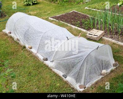 Hausgemachte rustikale mini Gewächshaus für Gurken aus Stahl Stäbe und agrofilms. Tag Sommer im Gemüsegarten Konzept - Stockfoto