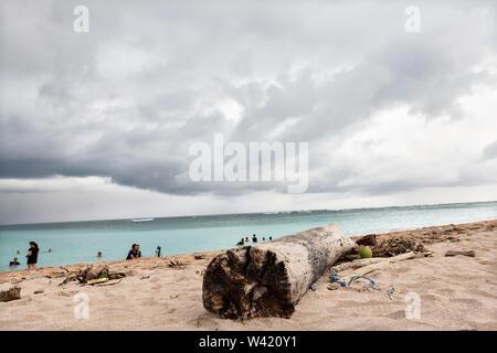 Sea Sand Nahaufnahme mit einem Holz baum Teil einschließlich der blaue Himmel und Horizont mit dunklen Wolken - Stockfoto