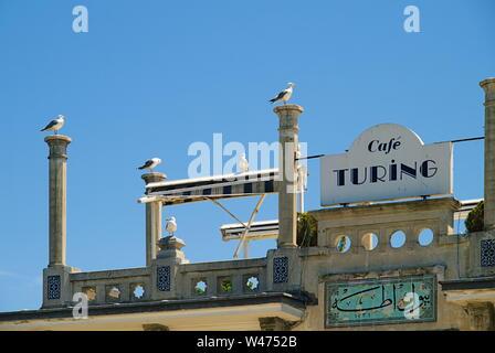 Big Island (Büyük Ada), Türkei, Möwen auf Spalten auf Cafe Turing Dach gegen den blauen Himmel.