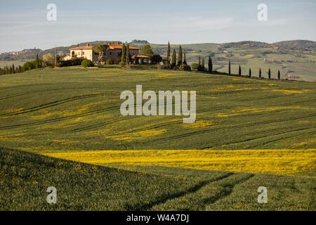 Traditionelle agriturismo villa im Tal der Val d'Orcia in der Toskana bei Sonnenaufgang. Pienza, Italien.