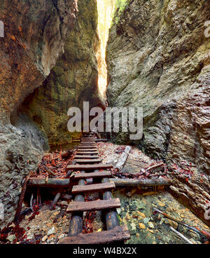 Canyon in Slovensky Raj, Slowakei - Stockfoto