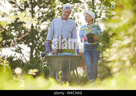 Portrait von Happy senior Paar zu Fuß in Richtung Kamera im Garten drücken Warenkorb mit Pflanzen - Stockfoto