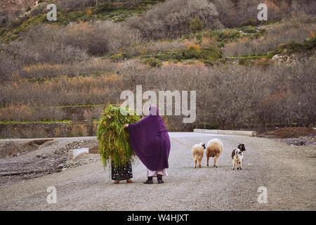 Zwei traditionell gekleidete marokkanischen Frauen auf der Straße im Hohen Atlas - Stockfoto