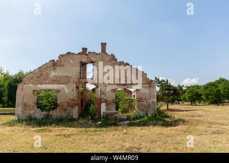 Einer zerstörten alten, verlassenen Haus ohne Dach auf den gelben Wiese im Sommer Sonne und blauer Himmel und Baum im Hintergrund - Stockfoto