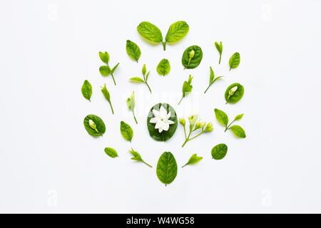 Flasche ätherisches Öl mit Jasmin Blüten und Blätter auf weißem Hintergrund - Stockfoto