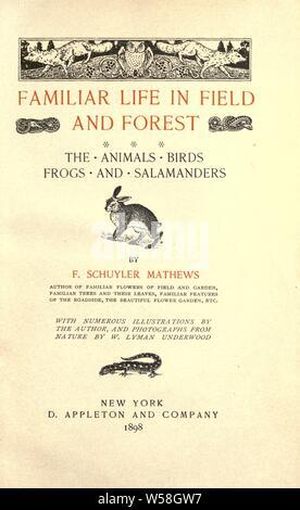 Vertraut leben in Feld und Wald; die Tiere, Vögel, Frösche und Salamander: Mathews, F. Schuyler (Ferdinand Schuyler), 1854-1938