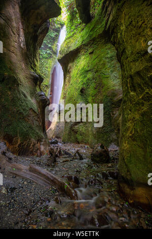 Blick auf einem Fluss und einem Wasserfall in einer schönen natürlichen Canyon. In Sombrio Beach in der Nähe von Port Renfrew, Vancouver Island, BC, Kanada. - Stockfoto