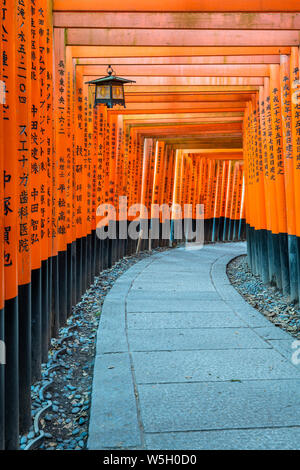 Fushimi Inari Taisha Shrine und torii Tore, Kyoto, Japan, Asien - Stockfoto