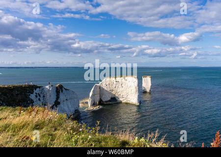 Old Harry Rocks, berühmten Kreidefelsen Felsbrocken auf der Isle of Purbeck Handfast, Jurassic Coast, UNESCO-Weltkulturerbe, Dorset, England, Großbritannien - Stockfoto