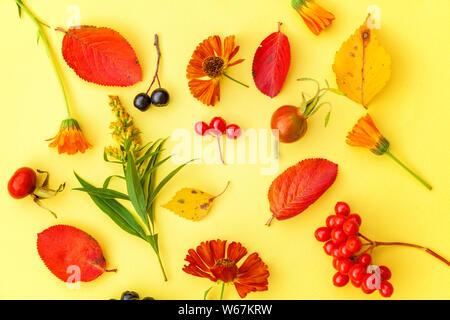 Herbst florale Komposition. Pflanzen viburnum Vogelbeeren dogrose frische Blumen bunte Blätter auf gelben Hintergrund. Fallen natürliche Pflanzen Ökologie wallp - Stockfoto