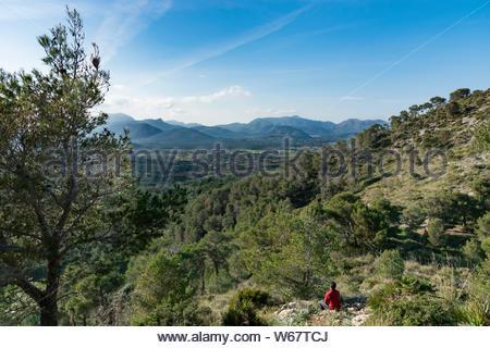 Ansicht von hinten von einem Mann genießt die Aussicht nach einer Wanderung, mit Wald und Berg im Hintergrund - Stockfoto
