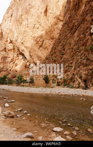 Todgha Gorges sind eine Serie von Flusskanonen aus Kalksteinen, kurz Wadi, im östlichen Teil des Hohen Atlas-Gebirges in Marokko, Afrika. - Stockfoto