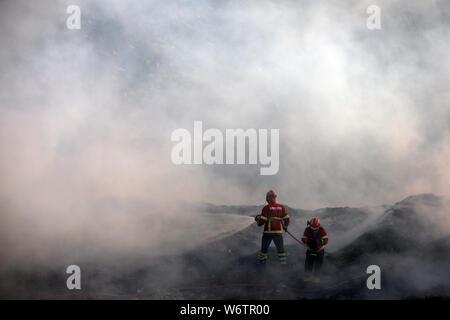 Sesimbra, Portugal. 2 Aug, 2019. Feuerwehrleute versuchen, ein Feuer in Sesimbra, Portugal, August 2, 2019 zu löschen. Credit: Petro Fiuza/Xinhua Quelle: Xinhua/Alamy leben Nachrichten - Stockfoto