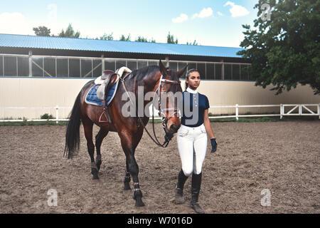 Junge Frau führt ihr Pferd zur Ausbildung und Vorbereitung für die Rennen - Stockfoto
