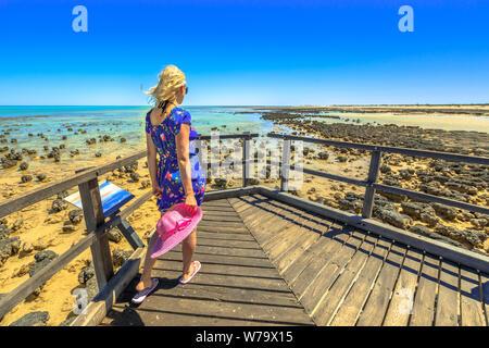 Frau auf dem Holzsteg Der stromatolithen Hamelin Pool. Marine Reserve, Shark Bay, Western Australien. Nach Frau in Australien reisen de - Stockfoto