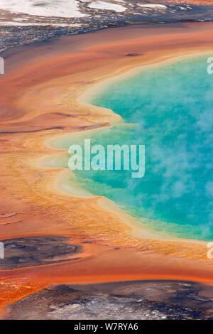 Grand Prismatic Spring, der Pool, Midway Geyser Basin, Yellowstone National Park, Wyoming, USA - Stockfoto