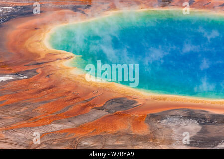 Grand Prismatic Spring, Midway Geyser Basin, Yellowstone National Park, Wyoming, USA, September 2011. - Stockfoto