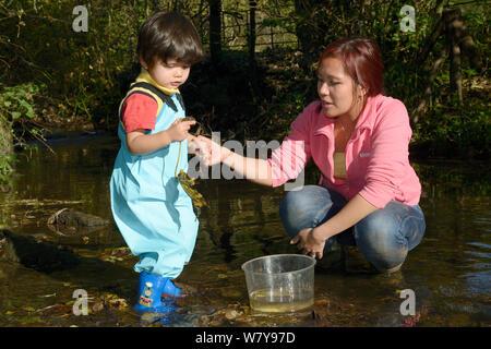 Junge von seiner Mutter gehalten, als er Stein von Bachbett, Bristol, Großbritannien, Oktober 2014 aufgehoben. Model Released. - Stockfoto