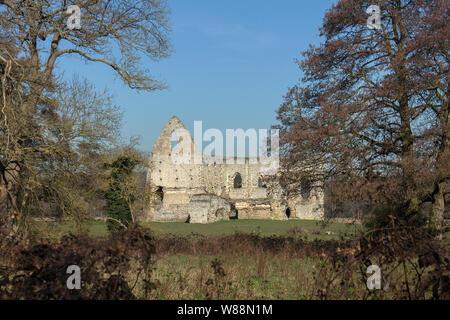 Newark Priorat (Ruine) von River Wey in der Nähe von Pyrford, Surrey - Stockfoto