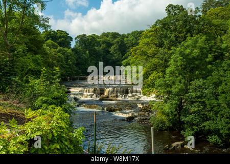 Aysgarth fällt in den Yorkshire Dales National Park sind eine dreifache Flucht der Wasserfälle von Wald und Ackerland umgeben, - Stockfoto