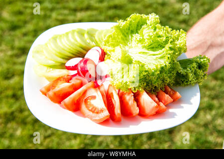 Vegetarisches Essen Konzept. Frische Lebensmittel. Geschmack von Frische. Frisches Gemüse auf dem Teller. Frühjahr Salat. Gehackte Tomaten Gurken Radieschen und Kopfsalat. Frischer Salat aus Eigenanbau Gemüse aus ökologischem Anbau. - Stockfoto