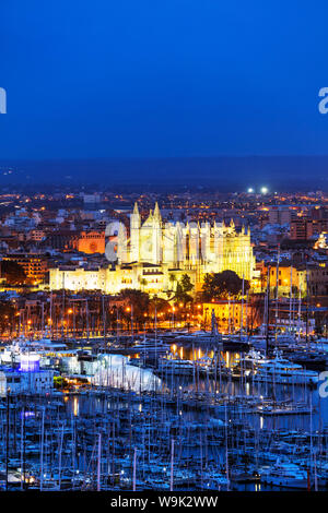 Die Kathedrale La Seu, Palma de Mallorca, Mallorca, Balearen, Spanien, Mittelmeer, Europa - Stockfoto