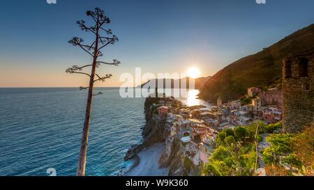 Vernazza, Cinqueterre, UNESCO World Heritage Site, Ligurien, Italien, Europa - Stockfoto