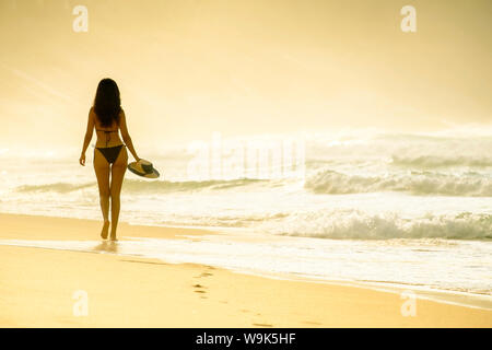 Junge Brasilianer (Lateinamerika) (Latina) Frau in Golden Dawn Licht am Strand im Bikini, Rio de Janeiro, Brasilien, Südamerika - Stockfoto