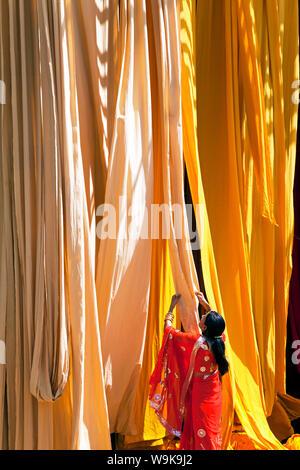 Frau im Sari, die Überprüfung der Qualität der frisch gefärbten Stoff hängen zum Trocknen, Sari Kleidungsstück Fabrik, Rajasthan, Indien, Asien